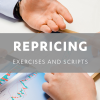 RePricing Exercises and Scripts